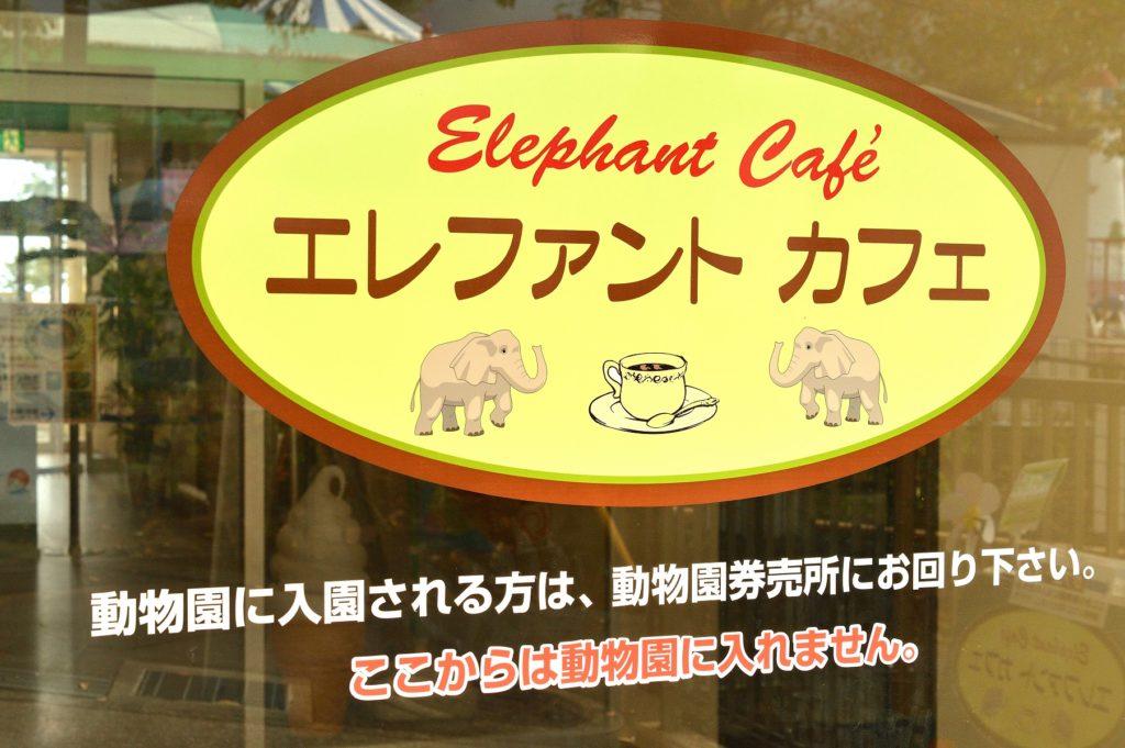 日立市 かみね動物園 エレファント・カフェの入り口はこれ