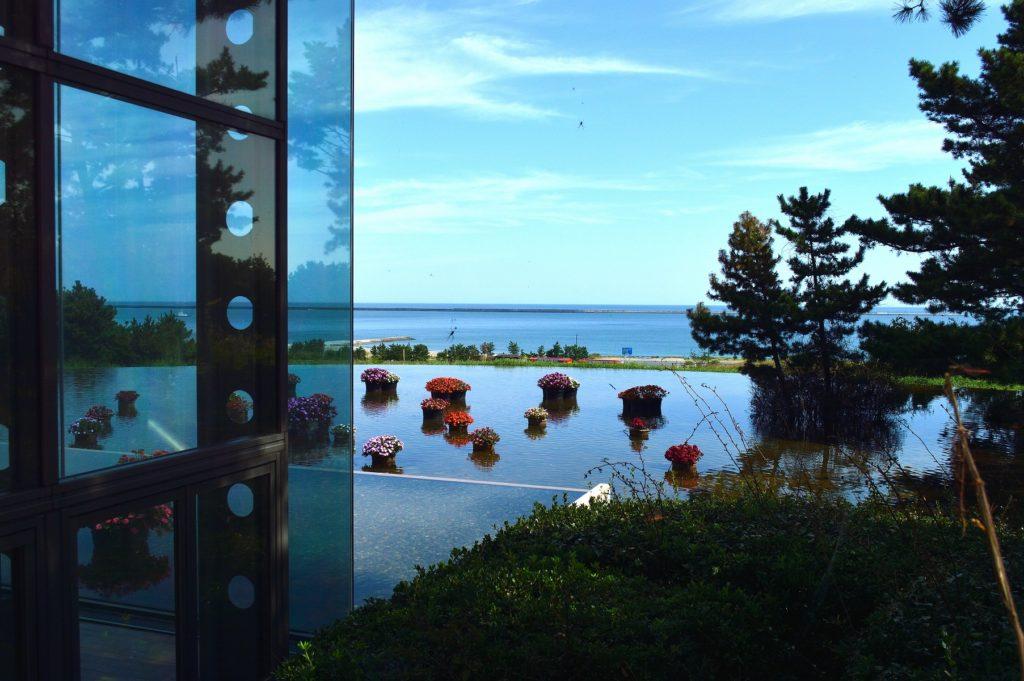 茨城県 ひたち海浜公園 グラスシーサイドカフェの入り口から
