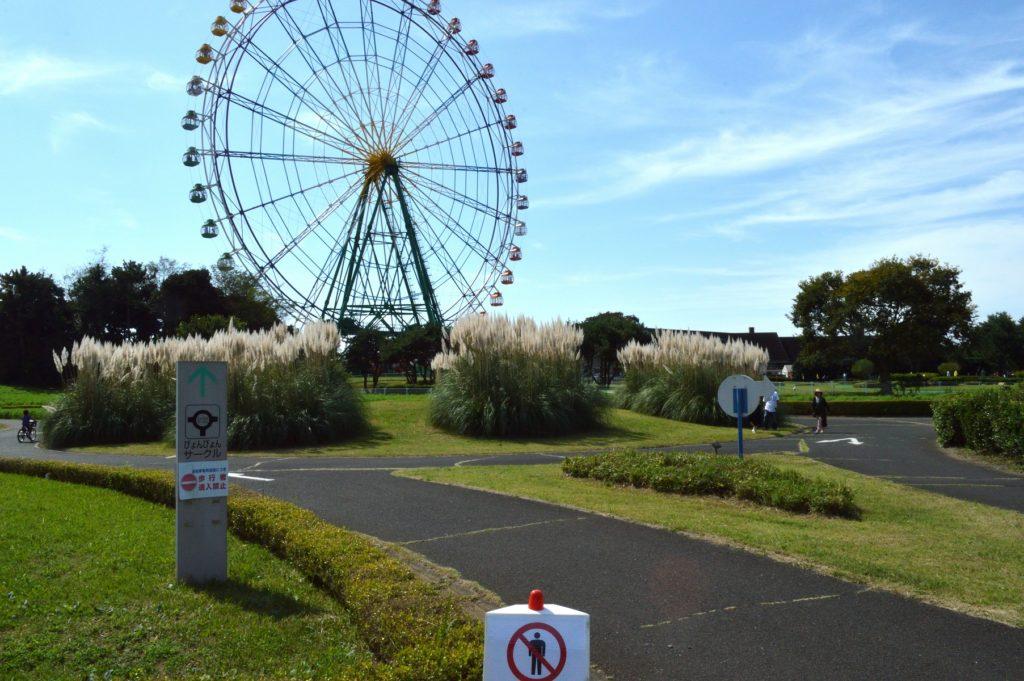 茨城県 ひたち海浜公園 ライクリングロードからみた観覧車の様子