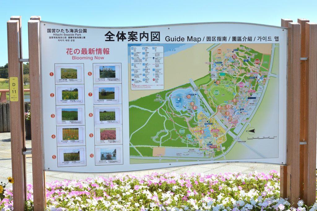 茨城県 ひたち海浜公園 西口ゲートに入ってすぐにある園内のマップ