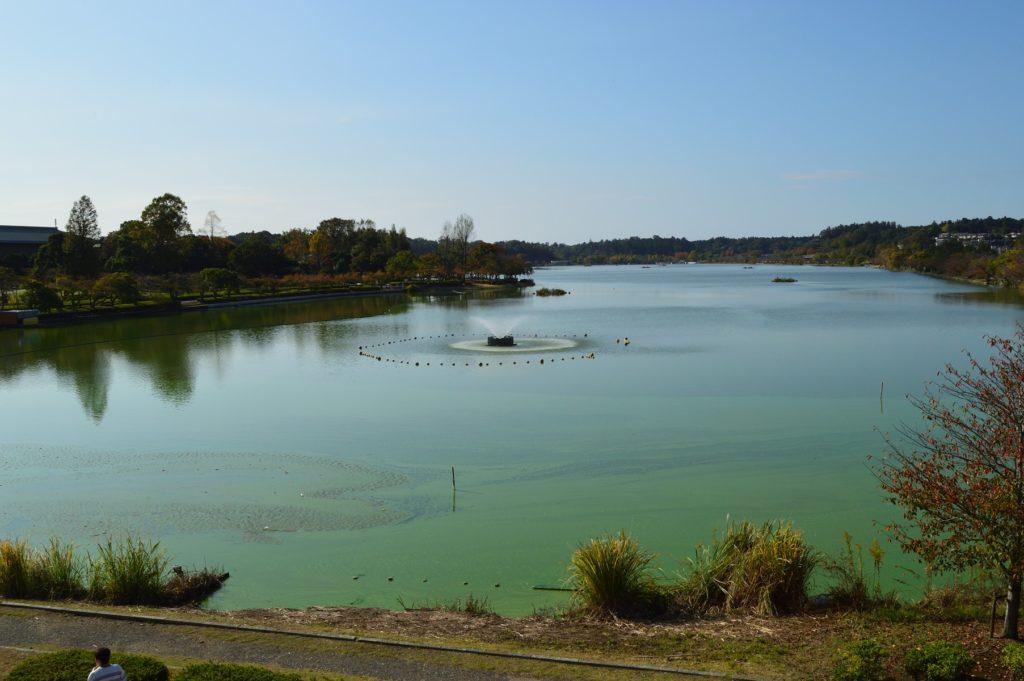 茨城県水戸市 秋の千波湖