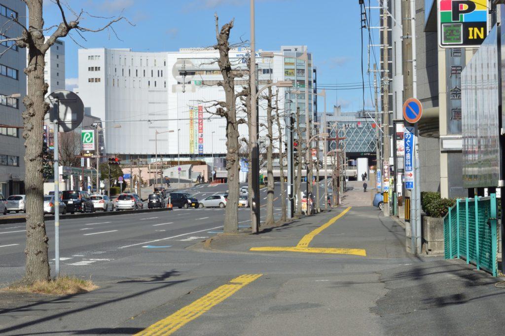茨城県水戸市 藪そば 道中 (4)