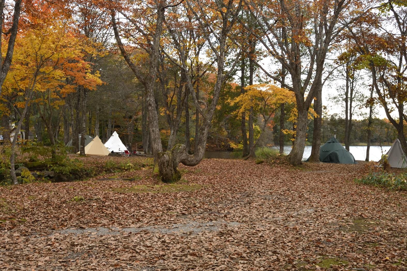 裏磐梯 ほとりの遊び場キャンプ場