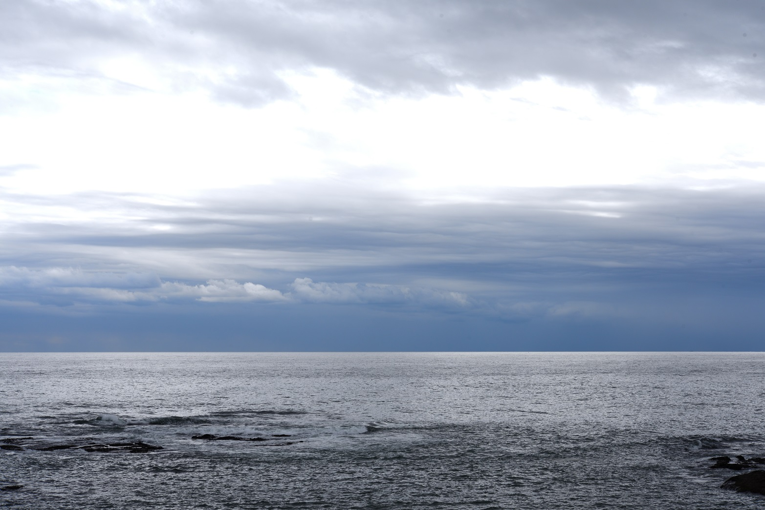 ウィスタリア 海